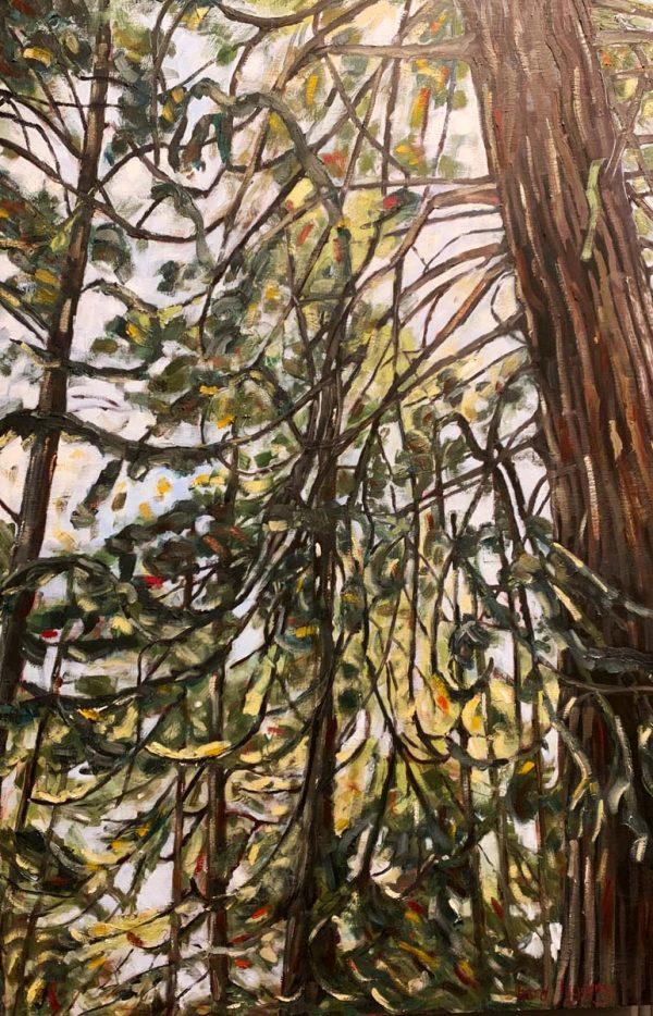 Tara-higgins-pinch-point-hsquard-gallery-fernie